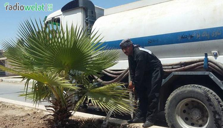 عمّال بلدية تربه سپيه  يقومون بسقاية الأشجار الموجودة في المنصّف على الشارع العام